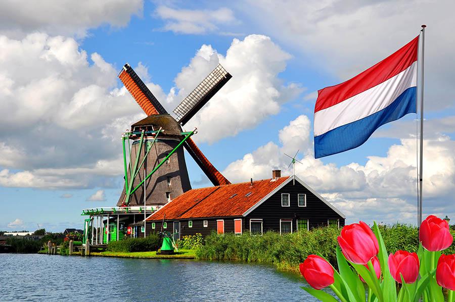 sklepy internetowe holandia